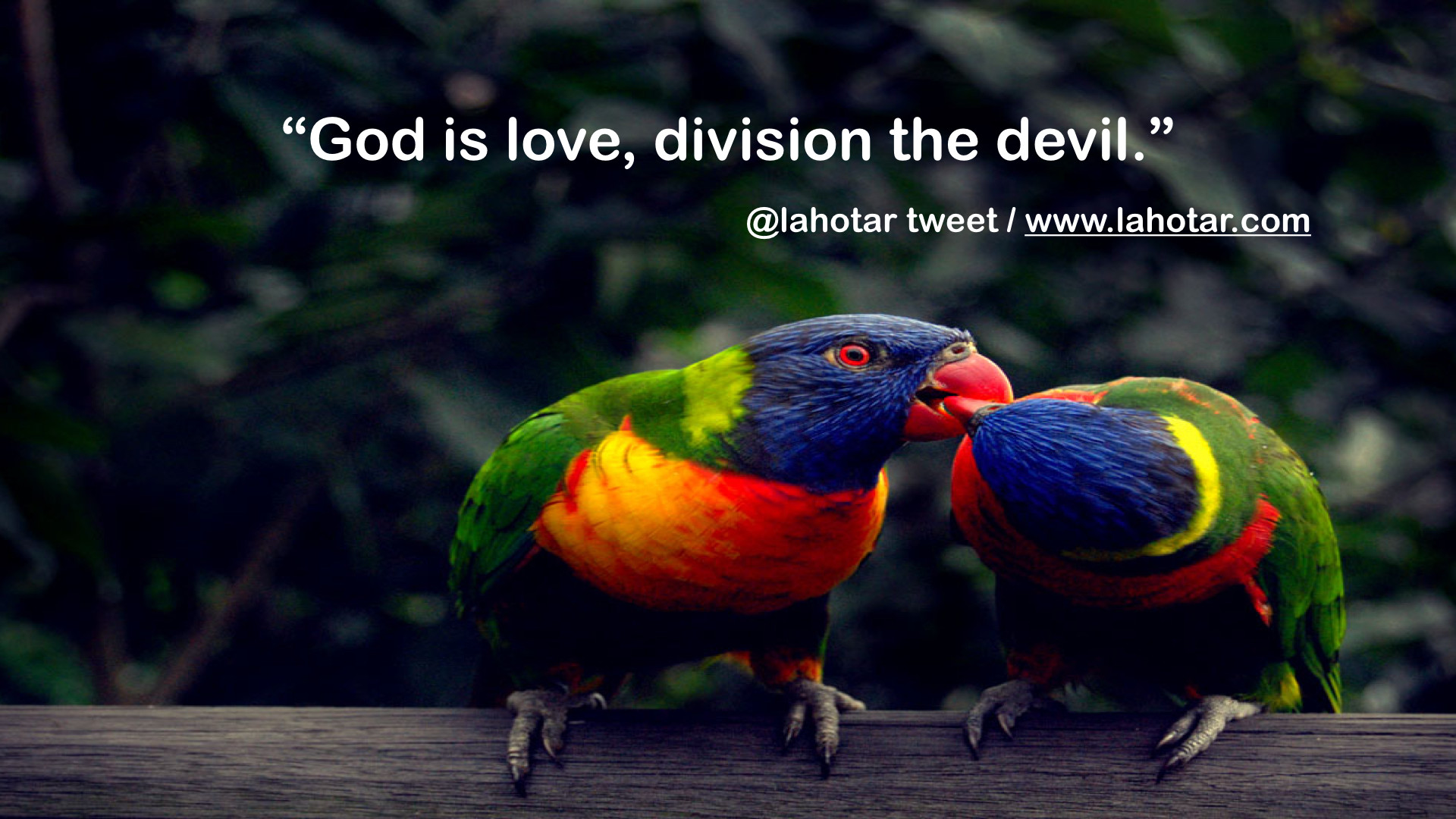 Love Bird Quotes Lahotar Quotes About Love 15  Welcome To Lahotar